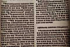 Bibles details